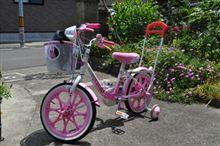 自転車の練習はじめました
