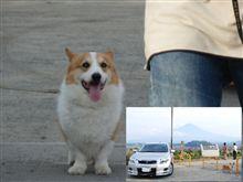 いきなり大石公園