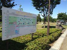 8月5日(日)に大野極楽寺公園にてBBQ開催決定!