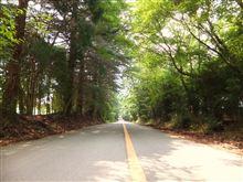 箕面→五月山ドライブウェイ