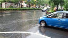 道路冠水!ソニカは泳ぎきることができるか。