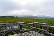 聖地行 47日目 雨竜沼湿原へ登ってきました
