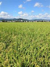 夏を満喫!農業体験(^^)