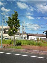 """近所に""""東京スカイツリー""""がありました(爆"""