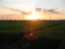 歌ってよ夕陽の歌を☆森山良子
