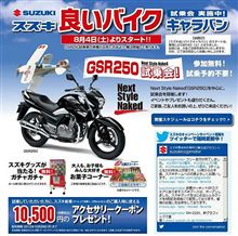 GSR250体験記