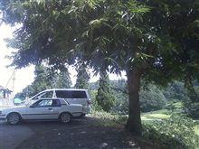 大きな栗の木の下で