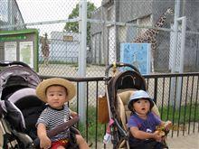初動物園( ´ ▽ ` )✿