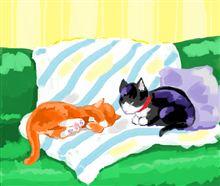 ネコ好きと愛猫家