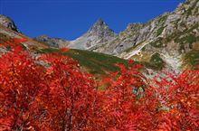 週末雑記 紅葉の槍ヶ岳登山