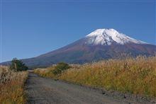 意外としっかり冠雪していた富士山