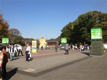 tokyo green 2012