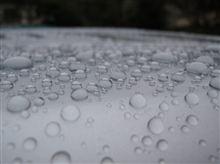 VW-160(25) 洗車 ・・・o(▼_▼θ