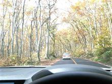 紅葉の大山ドライブ