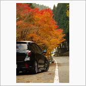 秋を求めて2012 前篇