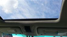 今日は良い天気でした(^-^)