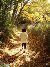 北本自然観察公園で『秋の自然観察オリエンテーリング』
