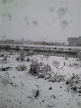 寒い(-_-;)
