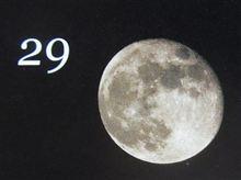 月暦 11月29日(木)