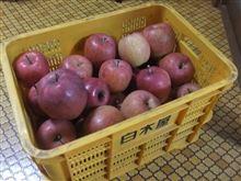 林檎の美味しい時期