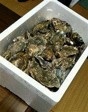 牡蠣祭り~~