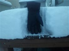 積雪24cmはこんなイメージ