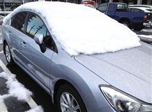 今年は早い初積雪