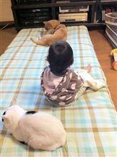 パサピカ荘の惨劇(横溝正史風)