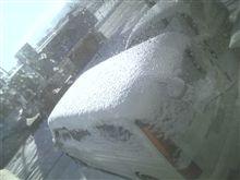 吹雪の後の…