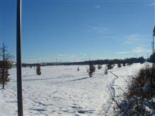 旅のスナップ45 雪のミュンヘン