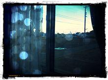 窓掃除終了♪