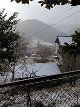 小原山間部雪情報20130103