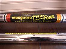 mongoose two four