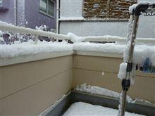 凄い雪☃(@_@)