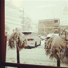 大雪ですなぁ。