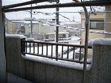 雪スゴくないですか!?