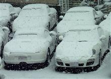 大変な雪に・・・