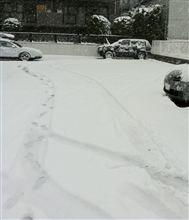雪すごかったね〜(OvO)