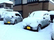 巷に「雪」の降る如く。