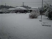 現在、千葉の成田近郊はこんな感じ