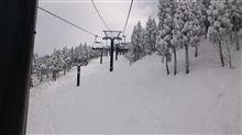 スキーへ行って来ました☆