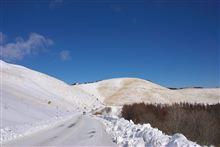 雪のビーナス