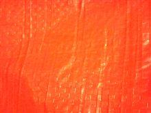 オレンジカーペット