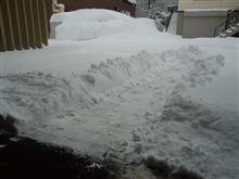 休日=降雪=除雪