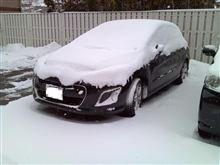 寒くて大雪