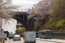 ◆◆桜と市営バスの撮影ポイント◆◆