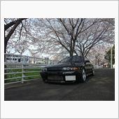 桜×スカイライン