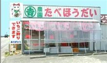 4/13日 静岡の久能山にて苺食い放題OFF 開催です^^