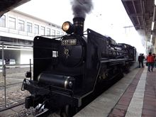 新潟駅で蒸気機関車を見た!!(動画アリ)