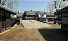 桜見学&ワープステーション江戸